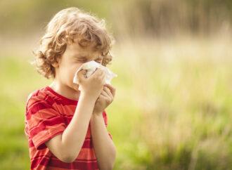 Зачинені вікна і дієта: в Одесі медики дали рекомендації щодо профілактики сезонної алергії