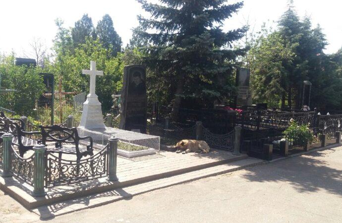 Трудная дорога на Северное кладибще: как сегодня проходит Родительская суббота на окраине Одессы (фото)