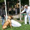 У вольєрі з тигром та ведмедем: в Одеському зоопарку презентували весняний кліп