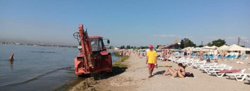 Як комунальники в Одесі розчищали пляж від водоростей? (відео)