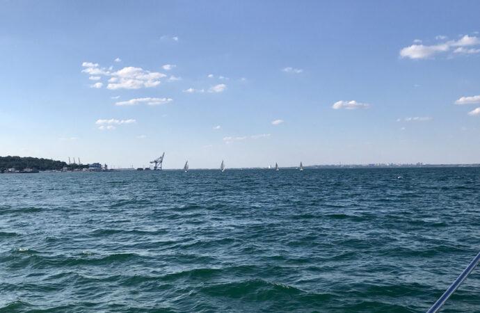 """В Черном море около Одессы начался опасный """"красный прилив"""" (видео)"""