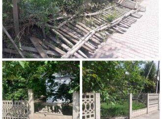 На Одещині двоє підлітків напідпитку зламали три паркани: батьки відновлювали власним коштом