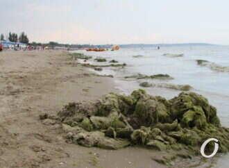 Загрязнение воды и воздуха в Одессе: что сообщают об этом профильные инстанции?