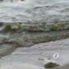 Как на одесских пляжах проверяют качество морской воды?