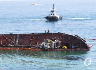 Спасение дельфинов и процес поднятия «Delfi»: коротко о главных одесских новостях 18 июня