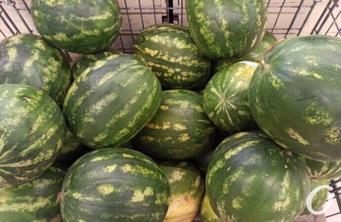 Сезон начался: где безопасно покупать арбузы?