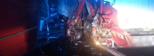 На трассе Одесса-Киев микроавтобус столкнулся с грузовиком – есть пострадавшие
