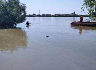 Пропавшую на Дунае девушку нашли мертвой — подробности трагедии