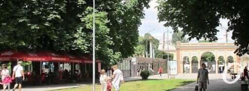 Погода в Одесі на 11 липня. Цього дня у місті буде спекотно