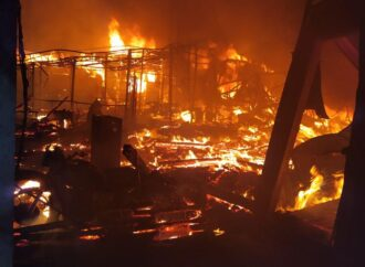 В Затоке горели базы отдыха (фото)