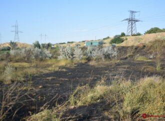Біля Куяльницького лиману згоріло три гектари трави (відео)