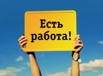 Служба занятости составила ТОП самых востребованных профессий в Одесской области