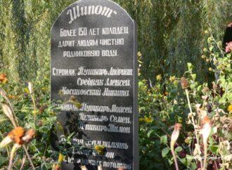 Куда поехать в Одесской области: целебный источник «Шипота» и красочный парк