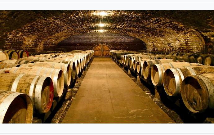 Музей виноделия может стать новой визитной карточкой Одессы