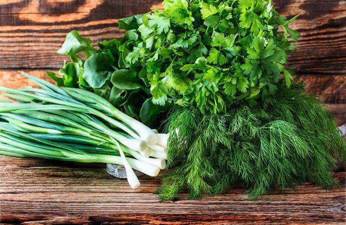 «Коварная» зелень с огорода — в чем ее вред и польза?