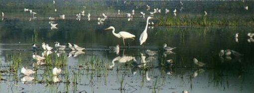 Минэкологии оцифровало национальный парк в Одесской области