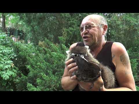 В Одеському зоопарку виступили проти використання тварин для фото (відео)