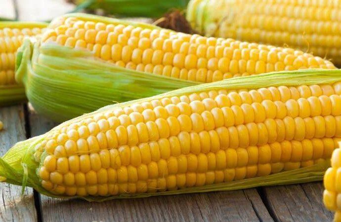 """Вкусно с """"Одесской жизнью"""": три рецепта блюд из кукурузы в початках"""