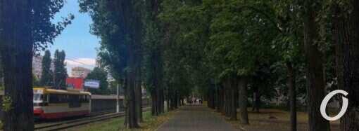 Погода в Одессе 18 сентября: в пятницу усилится ветер и немного похолодает