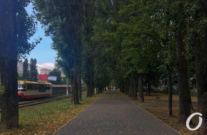 Погода в Одесі на 4 вересня. Вдень у місті буде хмарно