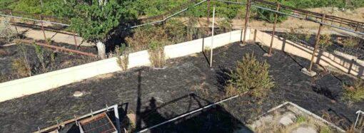 В Одесі поблизу непрацюючого нафтопереробного заводу сталася пожежа