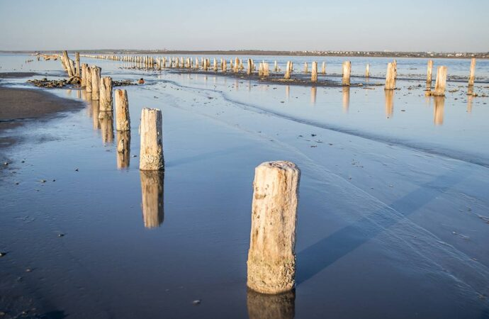 Высыхающий Куяльник хотят спасать пресной водой Хаджибея