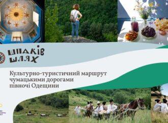 Мастера Кодымщины пригласили на уникальную онлайн ярмарку (фото)
