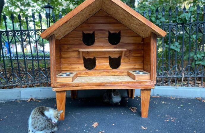 Уютный и безопасный: в центре Одессы установили домик для котов (фото)