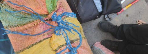 Рекордную партию кокаина перехватили пограничники в порту под Одессой (фото)