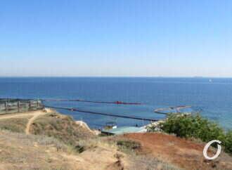 Температура морской воды в Одессе: комфортно ли на пляжах в пятницу?
