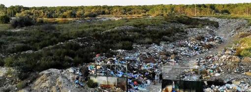 Экологическая опасность: возле Вилково скапливаются горы мусора