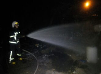 Горіли дерева та сміття: на Ланжероні сталася пожежа