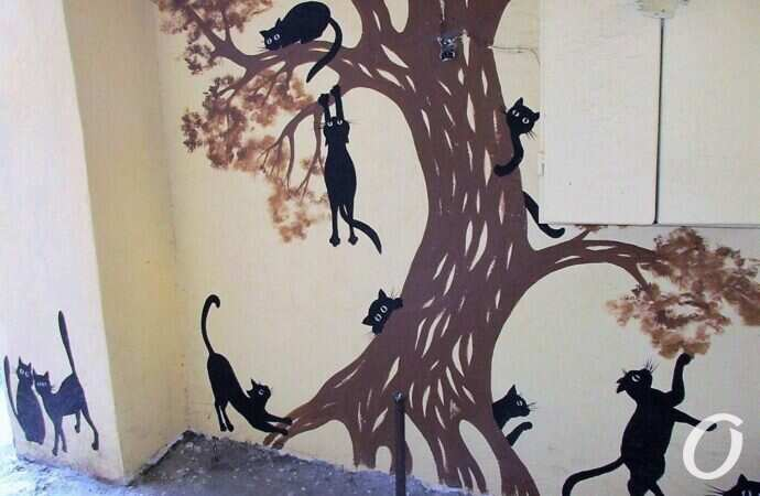 Семнадцать черных хвостатиков на одной стене: одесский кошачий двор