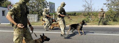 Пограничники и нацгвардейцы провели учения в Одесской области (видео)