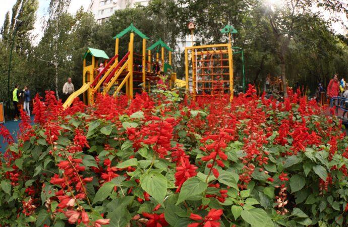 Детская площадка, солнечные батареи и тренажеры: в Одессе появился «Чудо-остров» (фото)