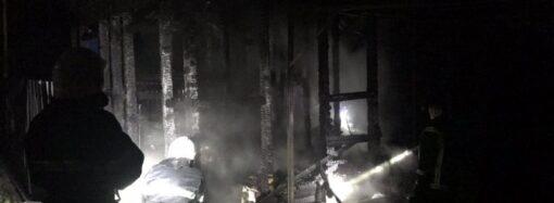 В Одесской области сгорели дом и электрокар: есть жертва