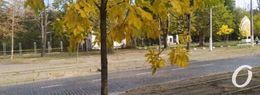 Погода в Одессе 22 октября: утихнет ли в пятницу ветер