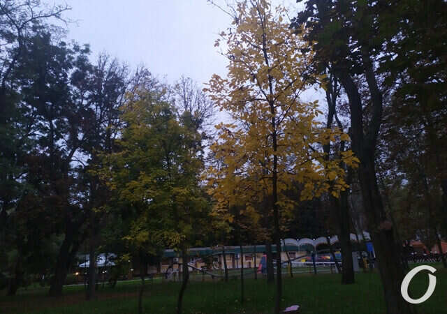 Погода в Одессе 29 октября: что обещают синоптики?