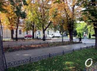 В Одессе уже не жарко, но еще не холодно – прогноз погоды на 22 октября