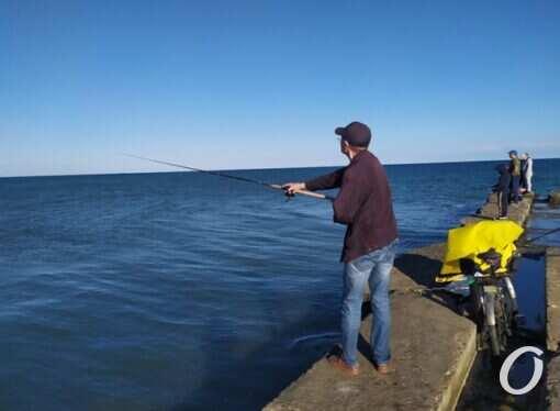 Морская рыбалка в Одессе: какую рыбу ловят осенью в Черном море?