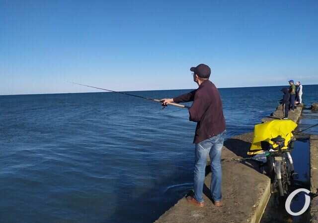 У одесских рыбаков начался «урожайный» сезон: как идет рыбка
