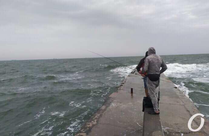 Рыбалка в Одессе: как поймать бычка, саргана и кефаль