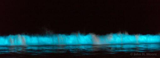 «Красный прилив»: чем одесситам угрожают опасные водоросли в Черном море?