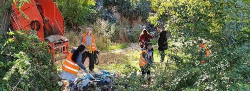 Из частного сектора в Одессе вывезли 60 тонн мусора за день, – горсовет