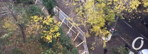 В Одессе неизвестные оградили двор многоэтажки в районе парка Победы и сносят деревья (фото, видео)