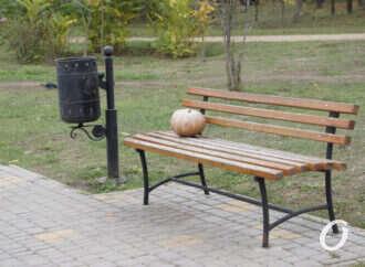 Как выглядит одесский Парк Победы в последний месяц осени – фоторепортаж