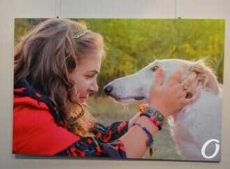 Выставка в «Доме с ангелом»: как собаки делают счастливыми особенных одесситов? (фото)
