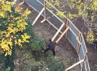 «Титушки» избили человека: в Одессе пройдет акция протеста против бездействия полиции