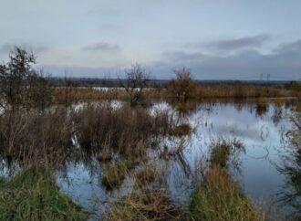 В Одесской области вышло из берегов водохранилище
