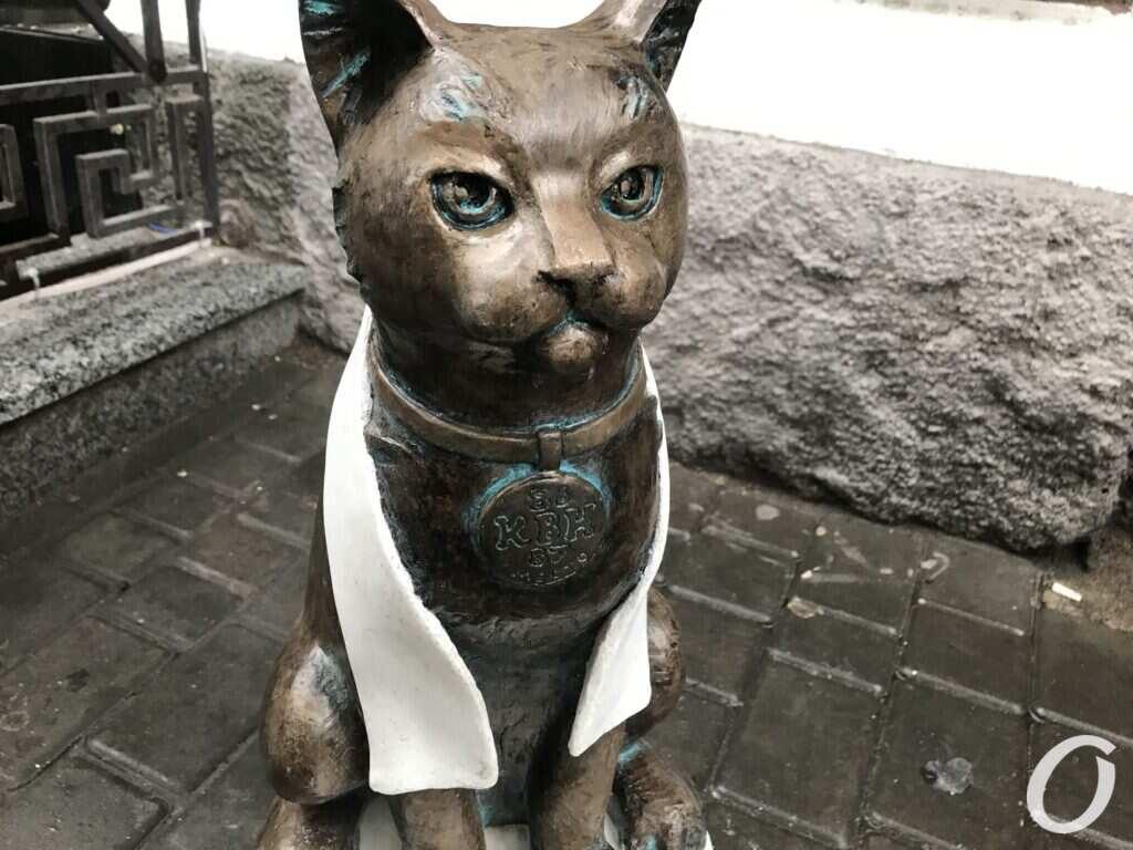 кот-джентельмен